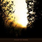 [album cover art] Hilyard - Asleep in Amber