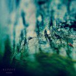 [album cover art] Hilyard - Repose
