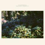 [album cover art] taennya – natural serenity